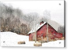 Wintry Mix Acrylic Print