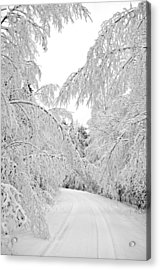 Wintry Road Acrylic Print by Conny Sjostrom
