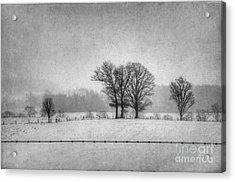 Wintry Scene Acrylic Print by Dan Friend