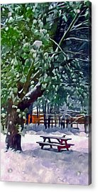 Wintry  Snowy Trees Acrylic Print by Lanjee Chee