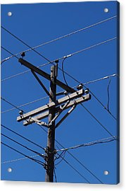Wired Acrylic Print