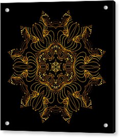 Acrylic Print featuring the digital art Wired by Owlspook