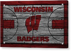 Wisconsin Badger Acrylic Print by Joe Hamilton