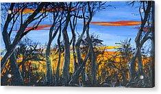 Wisconsin Creek Spooks Acrylic Print
