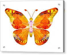 Acrylic Print featuring the digital art Wisdom And Flight Abstract Butterfly Art By Omaste Witkowski by Omaste Witkowski