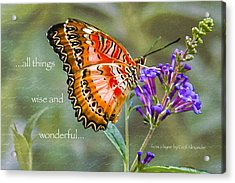 Wise And Wonderful Acrylic Print by Karen Stephenson