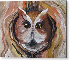 Wise Ole Owl Acrylic Print by Leslie Manley