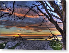 Wishing Branch Sunset Acrylic Print