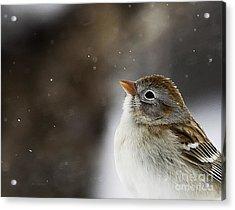 Wishing Upon A Snowflake  Acrylic Print