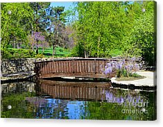 Wisteria In Bloom At Loose Park Bridge Acrylic Print
