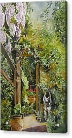 Wisteria In Blooms Acrylic Print by Alfred Ng