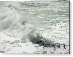 With Foam Please Acrylic Print by Donna Blackhall