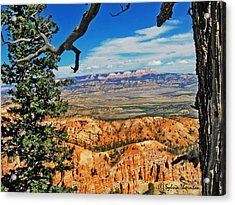 Acrylic Print featuring the photograph With God's Paintbrush by Sylvia Thornton
