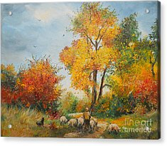 With Sheep On Pasture  Acrylic Print by Sorin Apostolescu