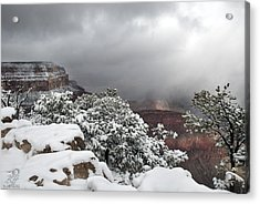 With Snow Acrylic Print