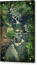 With You Here Beside Me Acrylic Print