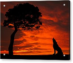Wolf Calling For Mate Sunset Silhouette Series Acrylic Print by David Dehner