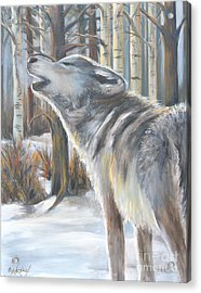 Wolf Acrylic Print by Cher Devereaux
