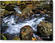 Wolf Creek Autumn Acrylic Print by Thomas R Fletcher