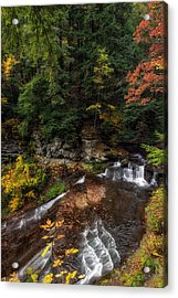 Wolf Creek Falls Acrylic Print by Mark Papke