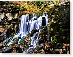 Wolf Creek Falls Acrylic Print by Thomas R Fletcher