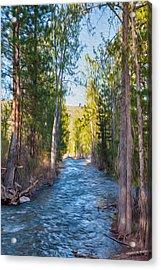 Wolf Creek Flowing Downstream  Acrylic Print by Omaste Witkowski