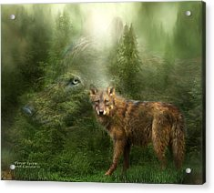 Wolf - Forest Spirit Acrylic Print by Carol Cavalaris
