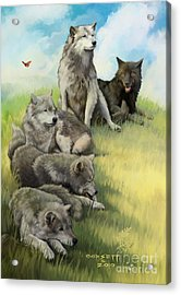 Wolf Gathering Lazy Acrylic Print