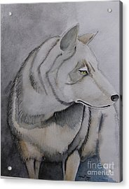 Wolf Acrylic Print by Grant Mansel-James