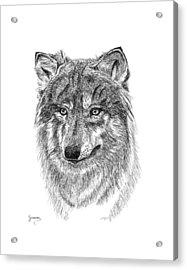 Wolf II Acrylic Print