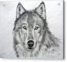 Wolf Acrylic Print by Julie Brugh Riffey