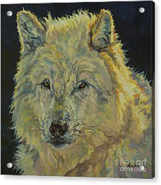 Wolf Moon Acrylic Print by Patricia A Griffin