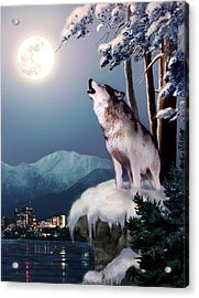 Wolf On The Doorstep Of Civilization  Acrylic Print