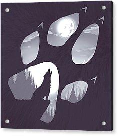 Wolf Paw Acrylic Print by Daniel Hapi