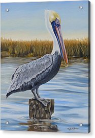 Acrylic Print featuring the painting Wolf River Pelican by Phyllis Beiser