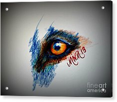 Wolf Sees Digital Acrylic Print by Michelle Wolff