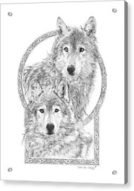 Canis Lupus II - Wolves - Mates For Life  Acrylic Print by Steven Paul Carlson