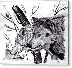 Acrylic Print featuring the drawing Wolves by Mayhem Mediums