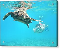 Woman Diving With A Hawksbill Sea Acrylic Print by 4fr