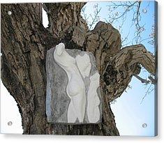Woman Torso - Cast 1 Acrylic Print by Flow Fitzgerald