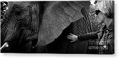 Woman Touching An Elephant Acrylic Print