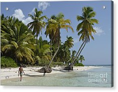 Woman Walking By Coconuts Trees On A Pristine Beach Acrylic Print by Sami Sarkis