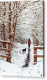 Woman Walking Dog Acrylic Print by Amanda Elwell
