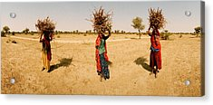 Women Carrying Firewood On Their Heads Acrylic Print
