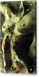 Womens  Torso Acrylic Print