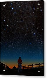 Acrylic Print featuring the photograph Wonder Filled by Larry Landolfi