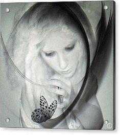 Wonder Acrylic Print by Gun Legler