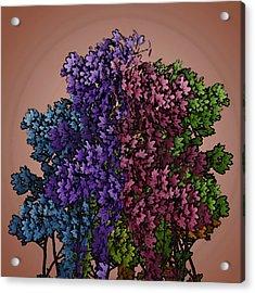 Wonderful Colors 1 Acrylic Print