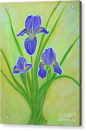 Wonderful Iris Flowers. Inspirations Collection. Acrylic Print