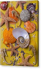Wonderful Sea Life Acrylic Print by Garry Gay
